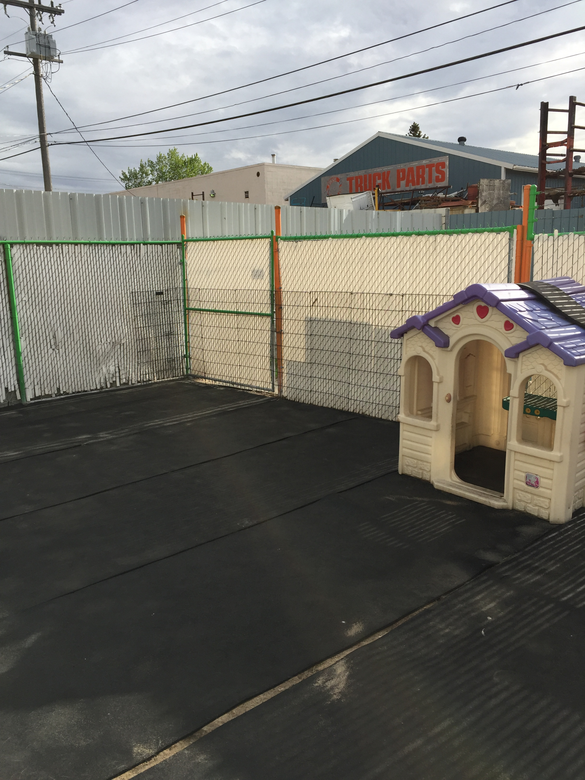 Dog Daycare Business Edmonton
